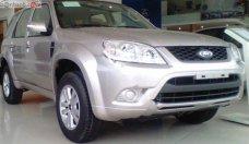 Bán ô tô Ford Escape năm sản xuất 2012, màu bạc, chính chủ, giá 450tr giá 450 triệu tại Tp.HCM