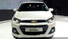 Bán ô tô Chevrolet Spark Duo năm 2018, màu trắng, nhập khẩu giá cạnh tranh giá 259 triệu tại Hà Nội