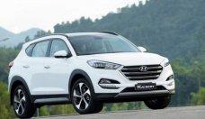 Cần bán Hyundai Tucson 1.6AT đời 2018, mới 100% giá 920 triệu tại Tp.HCM