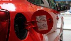 Bán xe Volkswagen Polo 1.6 AT năm sản xuất 2018, màu đỏ, nhập khẩu nguyên chiếc, 599tr giá 599 triệu tại Tp.HCM