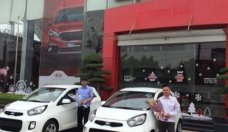 Bán ô tô Kia Morning sản xuất 2019, màu đỏ, giá 293tr giá 293 triệu tại Hà Nội