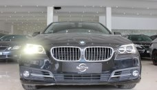 Bán BMW 5 Series 520i 2.0AT sản xuất năm 2014, màu đen, xe nhập giá 1 tỷ 350 tr tại Tp.HCM