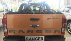 Bán xe Ford Ranger năm 2019, nhập khẩu giá 903 triệu tại Tp.HCM
