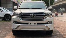 Bán Toyota Land Cruiser VX-R 4.6 2019, màu trắng, nhập Trung Đông mới 100% giá 6 tỷ 280 tr tại Hà Nội