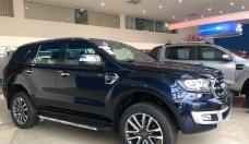 Bán ô tô Ford Everest đời 2020, xe nhập giá 879 triệu tại Tp.HCM