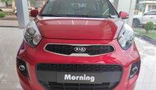 Kia Morning 2021 giá chỉ từ 304 triệu tại Kia Bình Phước - Hỗ trợ mua trả góp giá 304 triệu tại Bình Phước